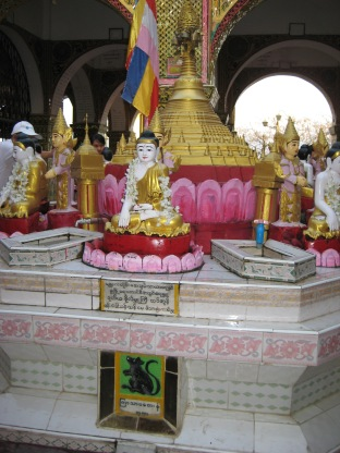 279_whose a rat Sutaungpyei Pagoda Mandalay Hill