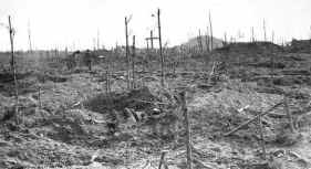 The Butte Polygon Wood