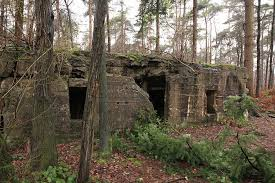 German pillboxes, Polygon Wood