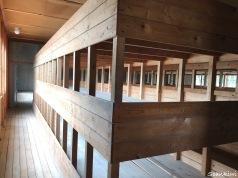 Dachau barracks - bunks