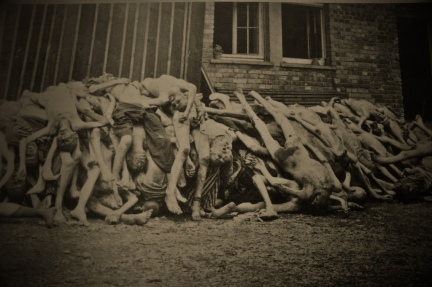Bodies outside Barrack X at time of liberation April 1945