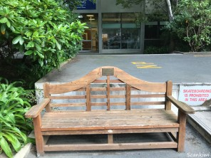 Otago University - Buck's bench 1
