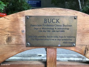 Otago University - Buck's bench 2