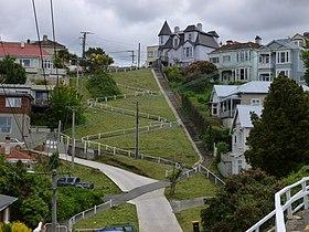 Elm Row, Dunedin